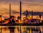 Verfehlte Wirtschaftspolitik: Insolvenzen und Stellenabbau
