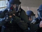 Polizeigewalt und der gewollt wehrlose Bürger