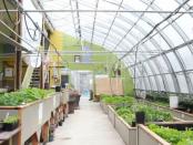 Die Permakultur in der Landwirtschaft
