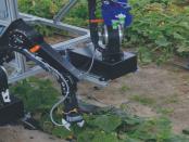 Automatisierung der Landwirtschaft: Roboter mit Greifarm für Gurkenernte