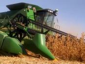 Flächenverbrauch in der Landwirtschaft: Eine unbemerkte Revolution bahnt sich an