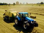 Falsche Etikettierung: Wohin wirklich Agrarsubventionen fließen