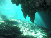 """Bergbau in der Tiefsee: """"Länder stecken bereits ihre Claims ab"""""""