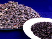 Synthesegas und Granulat aus Kunststoffmüll gewinnen