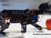 Raspberry Pi: Die Roboterkatze aus dem 3D-Drucker