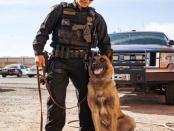 Kinder unter Hartz-IV: Warum Polizeihunde besser leben