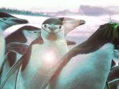 """Linux das politische Opfer: """"Milliarden Euro Steuergelder werden Jahr für Jahr verschwendet"""""""