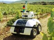 VineScout: Der Weinroboter zur Rebenkontrolle