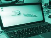 Die Optimierung von Linux Mint