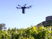Drohne und Landwirtschaft: Ein fliegendes Lasersystem soll Pilzbefall im Weinbau aufspüren