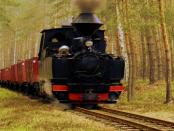 """Waldeisenbahn Muskau: """"Touristischen Anziehungspunkte in der Lausitz"""""""
