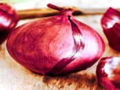 """Tor-Browser: """"Eine Möglichkeit anonymisiert über das TOR-Netzwerk zu surfen"""""""