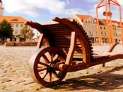 Wie der Schiebock die Lausitz prägt