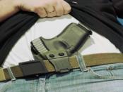 Was wirklich hinter den Waffenverboten steckt