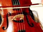"""""""Als besonderes Instrument"""" - Die Sorbische Geige aus der Lausitz"""