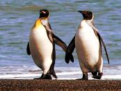 Linux in der Öffentlichen Verwaltung