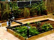 Farm.bot - Das automatisierte Gemüsebeet