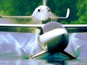 LISA Aeronautics - AKOYA: Wasserflugzeug mit Unterwassertragflächen