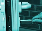 Betriebssystem Lampone Pi: Das sichere Live-System für den Minirechner Raspberry Pi