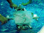 Coconut Pi: Der autonome Unterwasser-Roboter