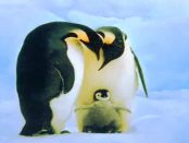 "LinuxBoot: ""Linux-Kernel zur Initialisierung des Rechners"""