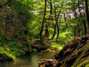 Kottmar: Weit mehr als nur eine Erhebung im Lausitzer Bergland
