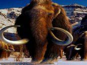 """Slawen: """"Bereits vor 35.000 Jahren in den böhmischen Eiszeitsteppen Mammuts jagten"""""""