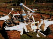 """Landwirtschaftsroboter Smash: """"Kann das Gerät sogar mehrere Aufgaben zeitgleich ausführen"""""""