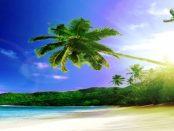 Tropische Lausitz: Die Wiederauferstehung von barocken Orangerien