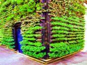 3D-Druck: Warum der Vertikale Garten die dritte Dimension des Pflanzenwachstums nutzt