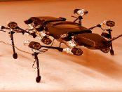 """Roboter: Die künstliche """"Heuschrecke"""" mit dem Namen Hektor"""
