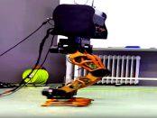 DYROS Robot - Beinroboter kann autonom die Balance halten