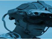 Integrated Visual Augmentation System: Die erweiterte Realität bei Kampfeinsätzen für die Infrantrie