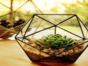 3D-Druck: Das günstige Mini-Gewächshaus aus Steckelementen