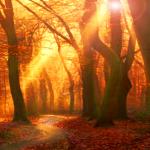 Die Archäoastronomie mitten im Wäldern des Lausitzer Berglands